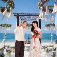 Важный момент в бракосочетании! Кольца! :: Райская птица Бородина