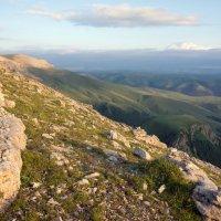 Приэльбрусье. Камни и  скалы Большого Бермамыта. Высота 2500 м. :: Vladimir 070549