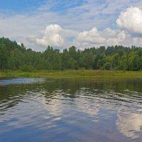 Вода, лес и небо :: Анатолий Иргл