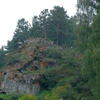 Все вы знаете архара на скале... :: Lady Etoile