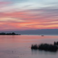 Место для медитаций на Финском заливе :: Владимир Колесников
