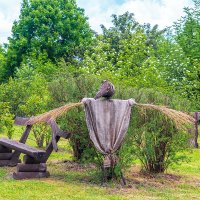 В ботаническом саду :: Леонид Соболев