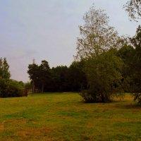 В парке. :: Мила Бовкун