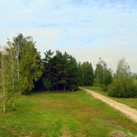 В парке . :: Мила Бовкун