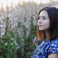 Поздняя летняя милота :: Максим Рунков