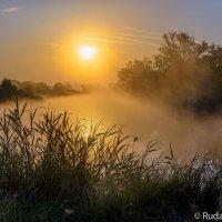 Утро в Троицкой дубраве :: Сергей