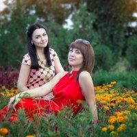730 :: Лана Лазарева