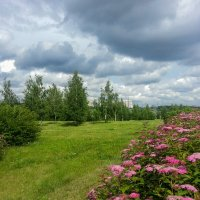 Гламурный пейзаж. :: Владимир Безбородов