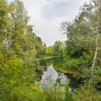 Река Ориль :: Владимир Боровков