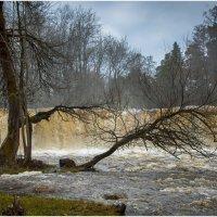 эстонские водопады . :: Игорь Абламейко
