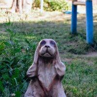 статуэтка пёсик :: Света Кондрашова