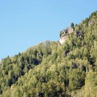 Наблюдатель на вершине горы Телецкого озера. :: Маргарита Кириллова