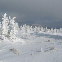зима :: Олег  Царёв