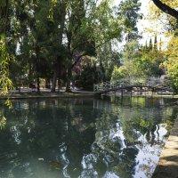 Абхазия, Новый Афон, фото 03 :: Наталья Понтус