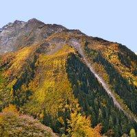 Осень в горах Домбая. :: Клара