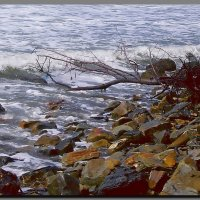 море.  шторм. :: Ivana