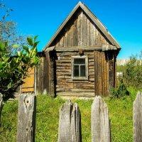 Домик в деревне :: Светлана Щербакова