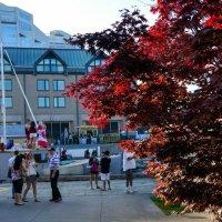 Национальный флаг Канады даже на платье.... :: Юрий Поляков