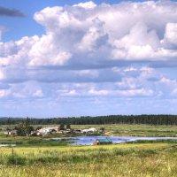 Посёлок в лесу :: Сергей