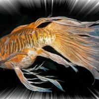 Золотая рыбка :: Alexander Dementev