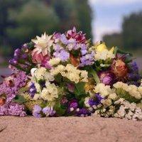 Сухоцветы :: Марина
