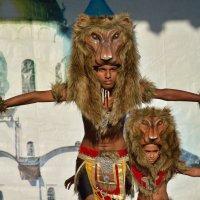 На фестивале САДКО (этюд 20) :: Константин Жирнов