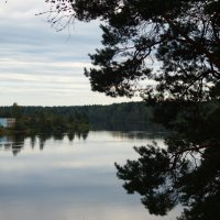 Река Луга :: Андрей Иванов