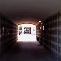 тунель арок :: Дмитрий Паченков