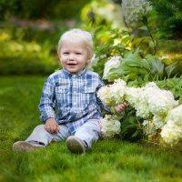 Солнечное детство :: Вероника Саркисян