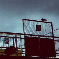 Одиночество :: Ксения Кузнецова