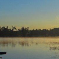 Утро на озере :: Татьяна Осипова(Deni2048)