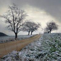 ...южный ветер еще подует... :: Elena Wymann