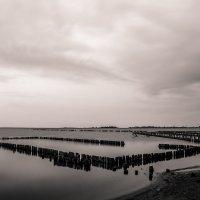 Купальни Красного озера 2 :: Artem Zelenyuk