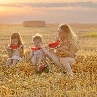 лето -это маленькая жизнь :: Stukalova Anna Stukalova