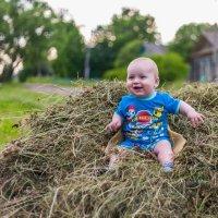 Ребёнок на стоге сена :: Максим Туманов