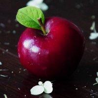 """почти """"  apple """" :: Лариса Журавлева"""