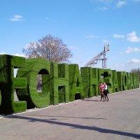 а весна то скоро :: Дмитрий Паченков