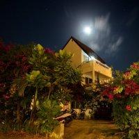 Лунная ночь :: Юрий Кольцов