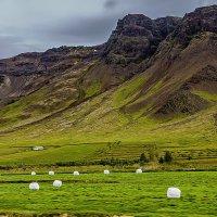 Iceland 07-2016 10 :: Arturs Ancans