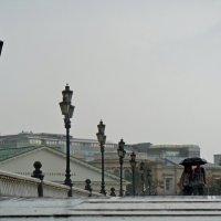 дождь :: Ольга Заметалова