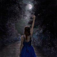 Лунная тропа :: Anna Vers