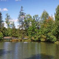 В старом парке. :: Ирина Нафаня