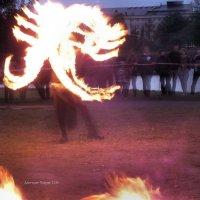 Огненный скорпион :: Дмитрий Ерохин