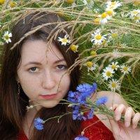 В поле :: Светлана Двуреченская