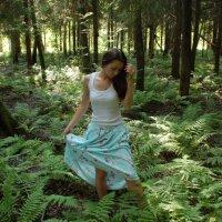 В лесу :: Светлана Двуреченская