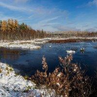 Зима скоро... :: Дмитрий Сиялов