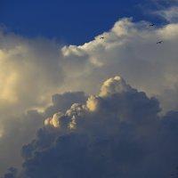 Высоко летят над облаками :: valeriy khlopunov
