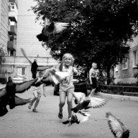 Дети и голуби :: Алена