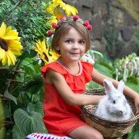 Трогательный зоопарк )) :: Райская птица Бородина