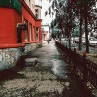 После дождя :: Вячеслав Баширов